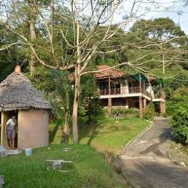 Homestay in Takua Thung near Wat Dittatharam